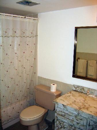 Lilypad Suite Hotel: Bathroom