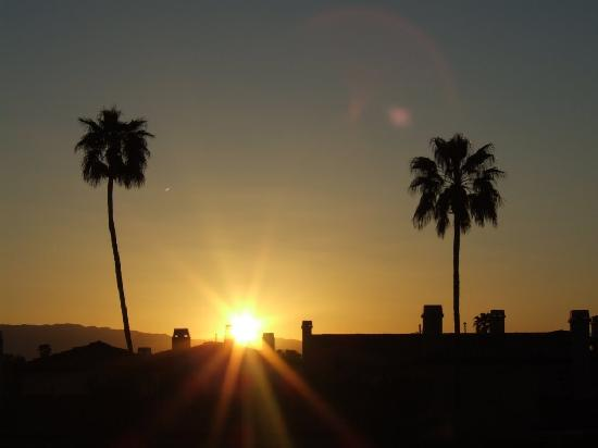Desert Isle of Palm Springs: View in the morning!