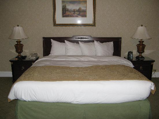 Big comfy bed picture of the drake hotel chicago for Comfy hotels resorts