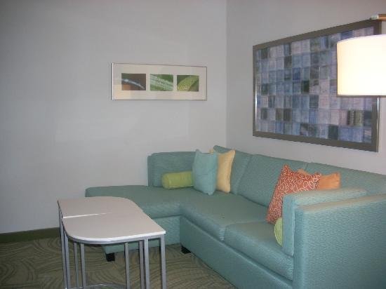 Springhill Suites Hampton Coliseum: hotel room  with couch