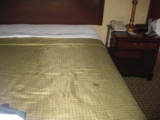 Colonial Inn: Spot on bed
