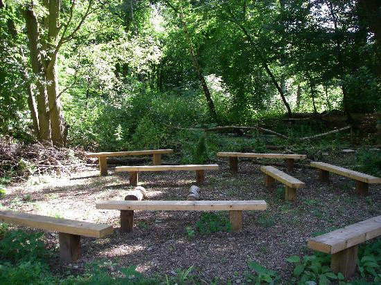 Outdoor Classroom Picture Of Epping Forest Field Centre