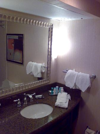 Hilton Houston Westchase: Bathroom