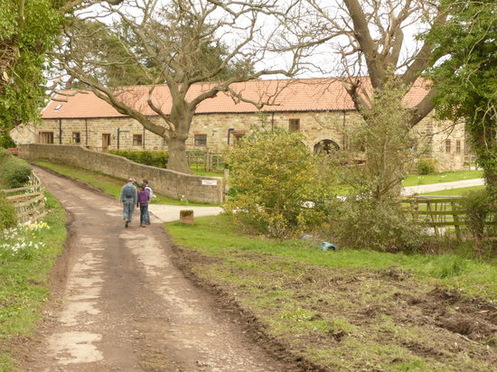 Newbiggin Hall Cottages