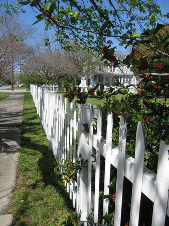 Cape Charles, VA: Walks around the cape were peaceful and relaxing