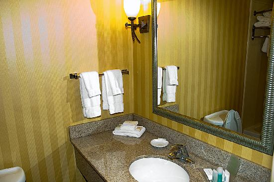 Holiday Inn Rocky Mount I-95 @ US 64 : Bathroom 