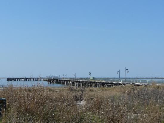 Great beaches historic fort miles observation tower for Cape henlopen fishing report