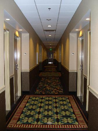 La Quinta Inn &amp; Suites Edgewood / APG South: Hallway