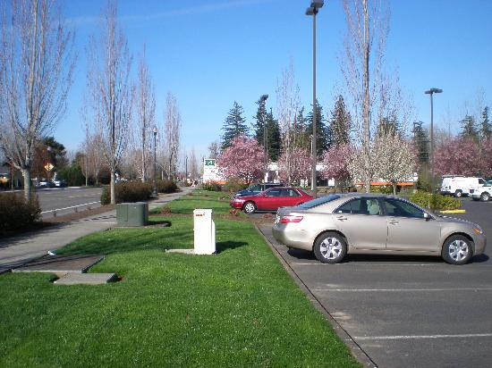 BEST WESTERN PLUS Cascade Inn &amp; Suites: parking