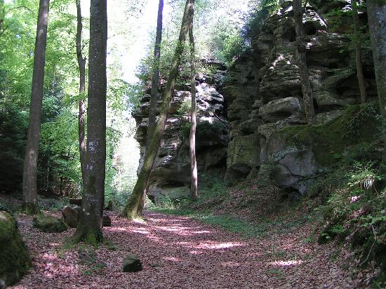 "Berdorf, Luxembourg: The ""Felsenweg"" leads along impressive sandrocks."