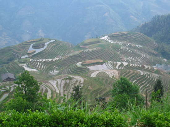 Longsheng County otelleri