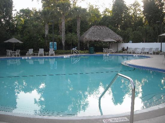 Wyndham Cypress Palms: Beautiful, clean and inviting pool