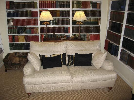 Library House: Sitting room (and Fizz)