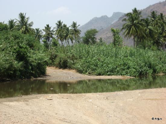 Vellore, India: The stream/river across the road to Amirthi