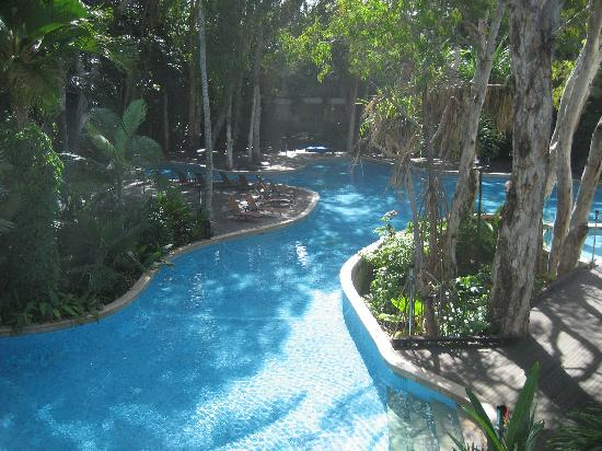 Awesome Swimming Pool Picture Of Palm Cove Cairns