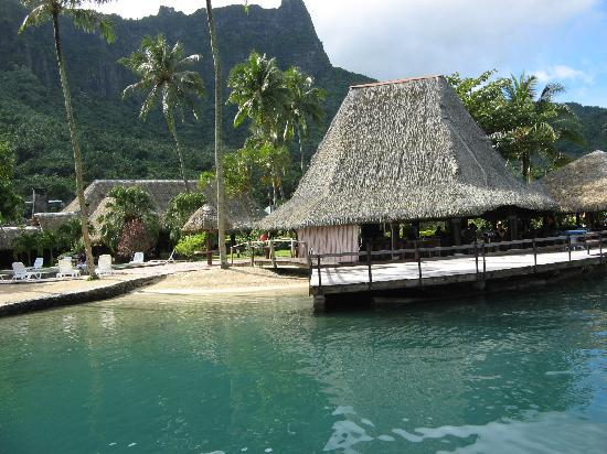 Blue pineapple the restaurant at club bali hai picture for Chambre 13 tahiti plage mp3