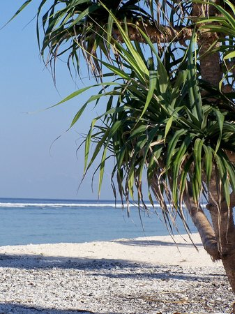 Gili Trawangan, Indonesia: beach at the southern end of island