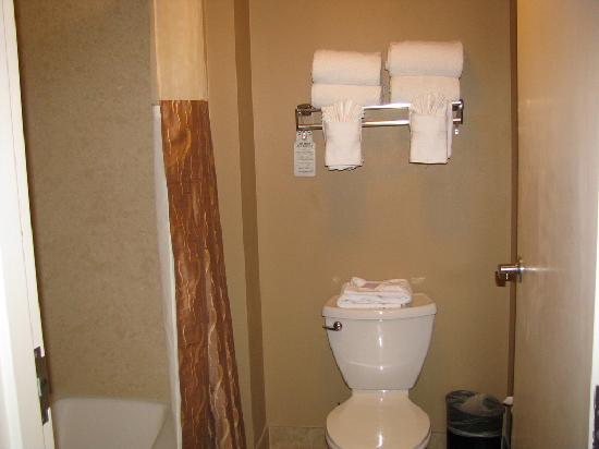 Buena Vista Suites: Bathroom