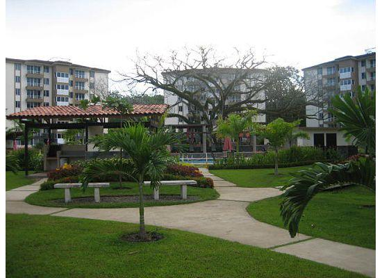 Costa Linda Condominiums: Another view of the grounds