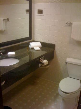 Drury Inn & Suites Austin North: Bathroom