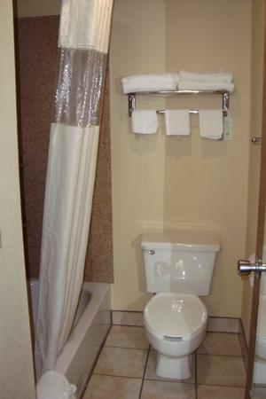 Comfort Inn: bathroom; kinda stall-like; but, very clean; great shower pressure