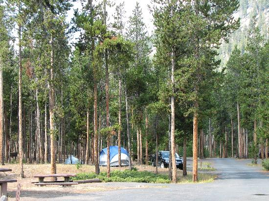 ... Picture of Madison Campground, Yellowstone National Park - TripAdvisor