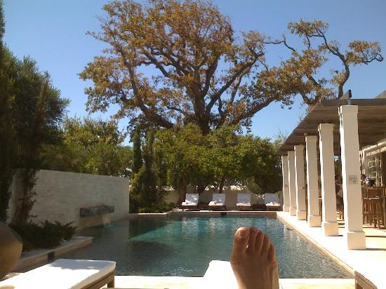 Steenberg Hotel: Pool view from a lazy perspective :)