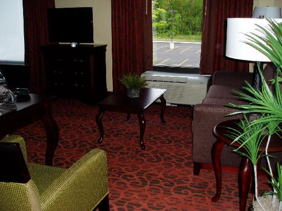 Hampton Inn Rochester Webster: From the entry
