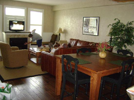 Cherokee Lodge Condos: Living room
