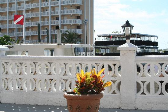 Nice Flower Pots Around The Pool Deck Picture Of Bell Channel Inn Freeport Tripadvisor