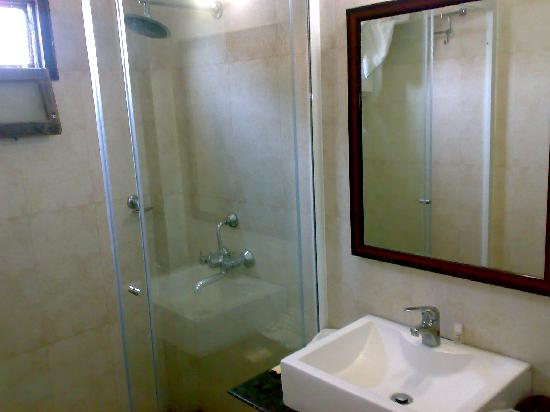 Hotel Shiraz Regency: Bathroom