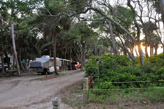 Best Campsites Myrtle Beach State Park