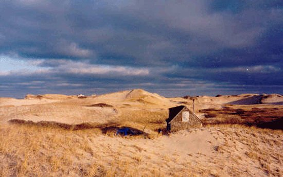 , : C-Scape Dune Shack, Provincelands