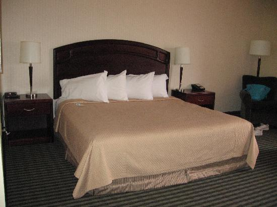 Viscount Gort Hotel Banquet and Conference Centre: the bed