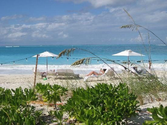 Grace Bay Club : View of beach