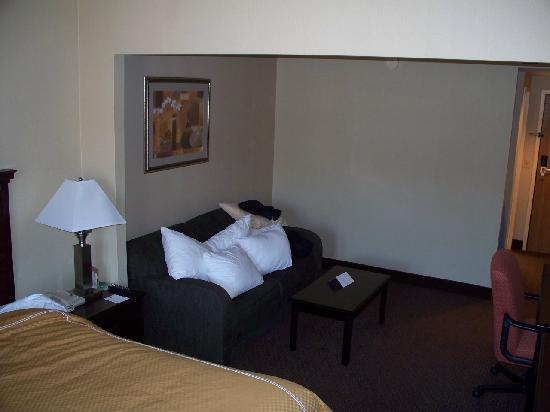 Comfort Suites Norwich: Room 528