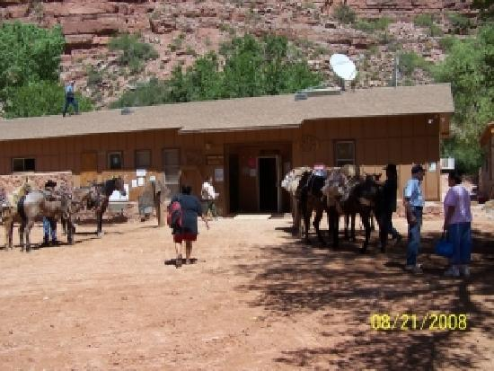 Supai, AZ: Summer Morning Center of Town