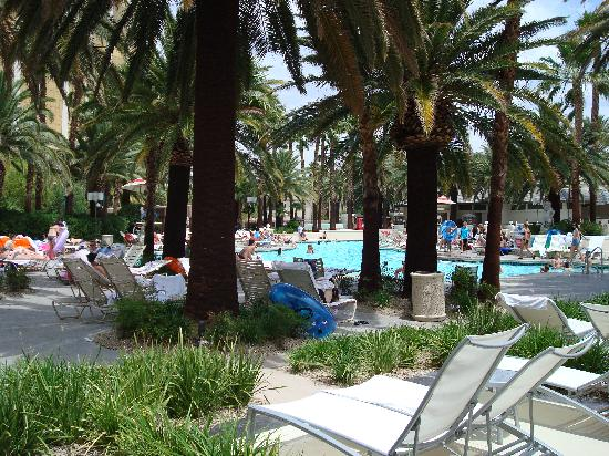Moorea beach pool at mandalay bay las vegas nv hours - Whitefish bay pool open swim hours ...