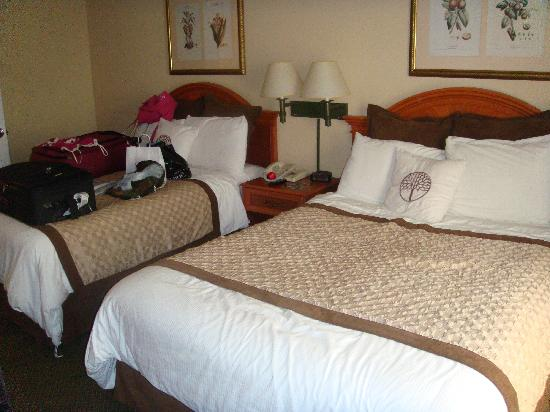 Hawthorn Suites by Wyndham Universal: two VERY COMFORTABLE queen beds.