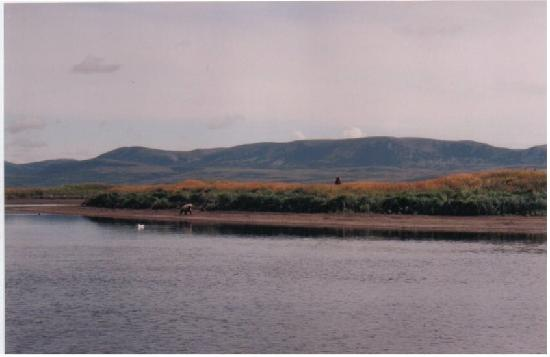 Photo of Bristol Bay Lodge Dillingham