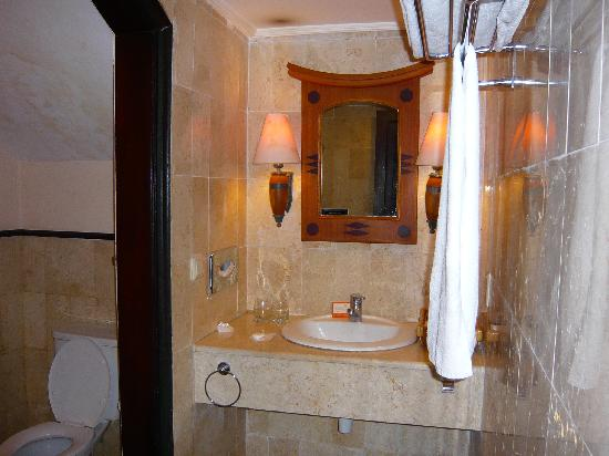 Hotel Equator: toilet excluding shower room pic