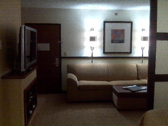 Hyatt Place Atlanta/Downtown: Sofa and tv