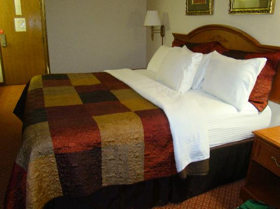 All American Inn &amp; Suites: Super Comfy bed and bedding