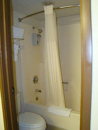 All American Inn & Suites: Nice bath room