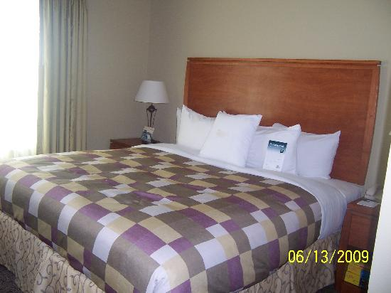 Homewood Suites by Hilton Irving - DFW Airport: The very comfortable bed!