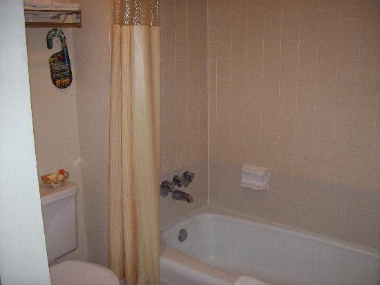 Days Inn Asheville West: Bathroom clean and well set up