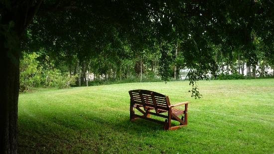 ‪‪Quillayute River Resort‬: Park bench under the trees‬