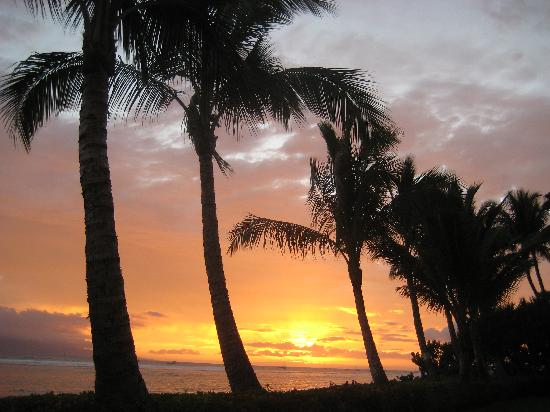Penny's Place Inn Paradise : one of the sunsets from Lahaina Shores