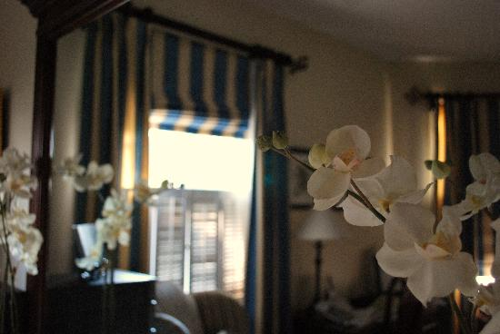 Cameron Park Inn Bed and Breakfast: hydrangea suite
