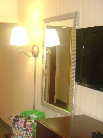 Hampton Inn -- Rocky Mount: Mirror and Flat Screen TV